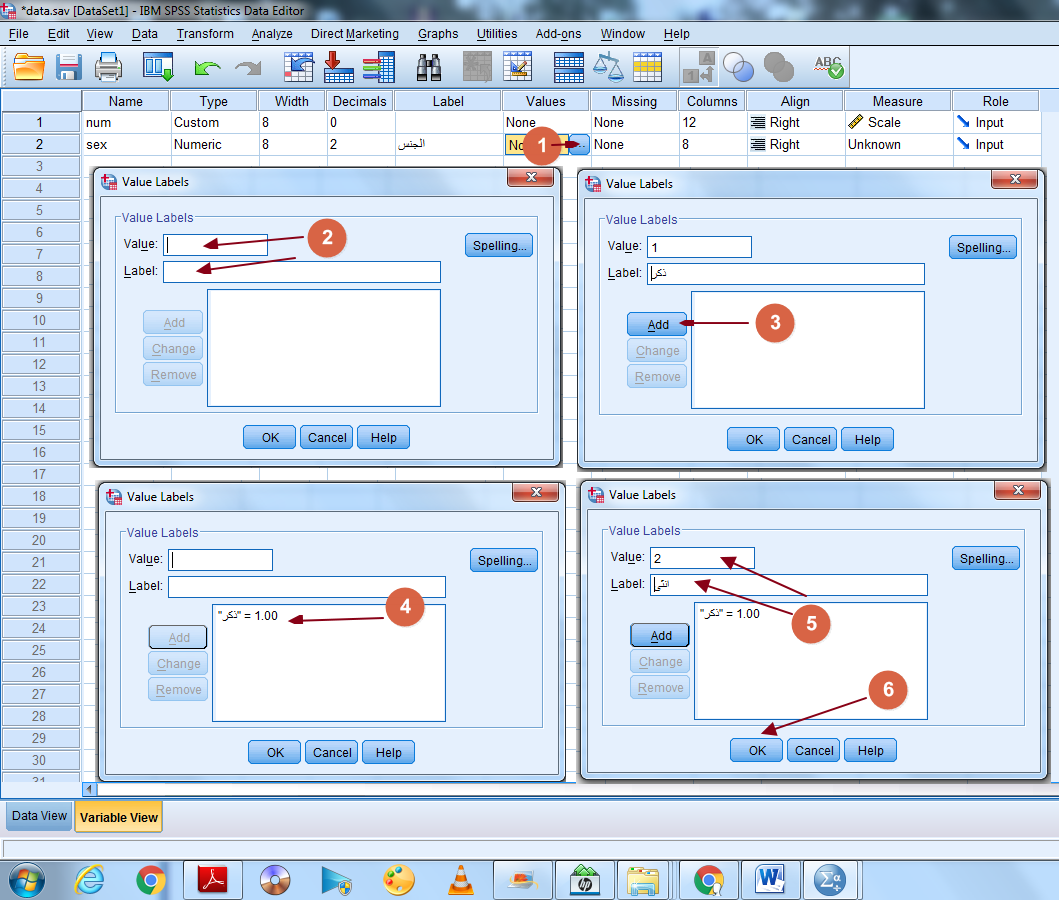 تجهيز و عرض البيانات برنامج spss