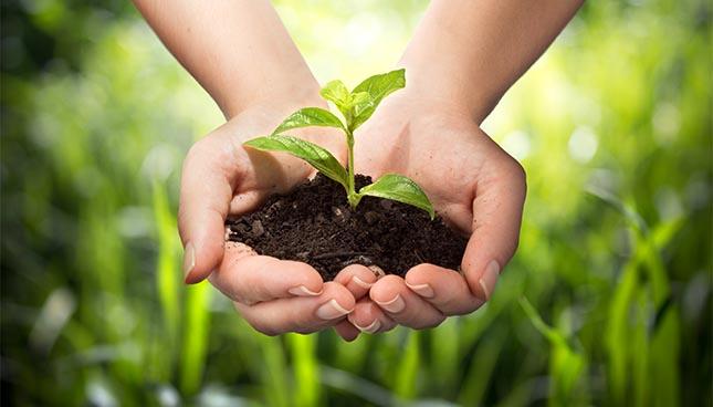 3ème Congrès International sur les Materiaux et le developpement durable