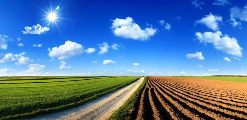 Environnement Agriculture et Biotechnologie - Séminaire International