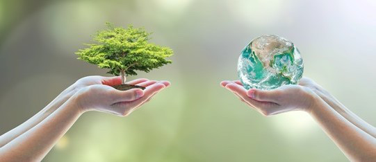 Congrès International sur la Valorisation et la Préservation de la Biomasse